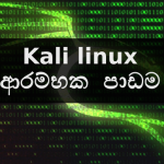 Kali linux ආරම්භක පාඩම – Installation guide